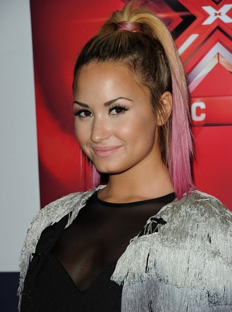 Angry Singer On The X Factor USA Premiere Insults Demi Lovato