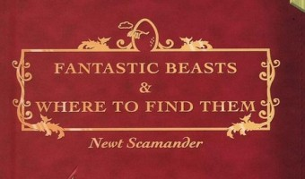 "J.K. Rowling's Harry Potter Spinoff Movie ""Fantastic Beasts and Where to Find Them"" Will Be A Trilogy"