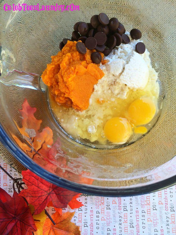Dark Chocolate Chip Pumpkin Pancakes - Fall Foodie Favorites Ingredients