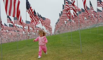 5 Ways to Spend Veterans Day